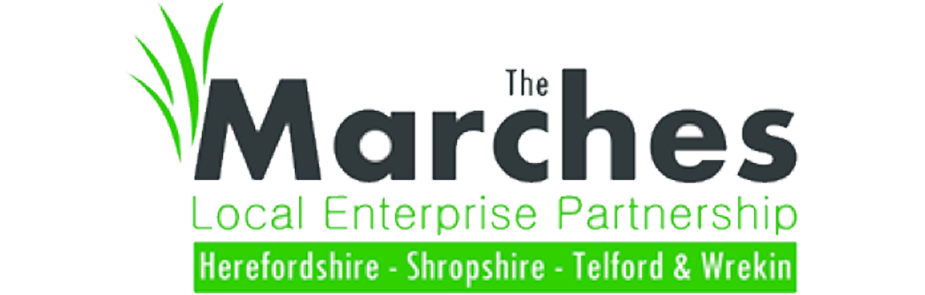 The marches logo